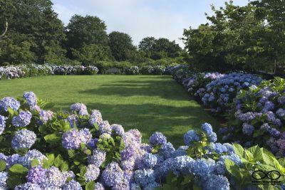 RI Garden Design and Planting