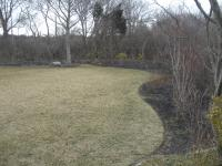 before-ri-garden-design-and planting-6