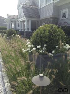 rhode island-garden & planting design-middletown